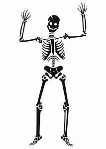 Malvorlage, Skelett