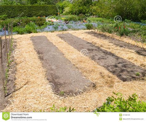 mulch for garden vegetable garden stock image image of growers landscaper
