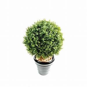 Boule De Buis Artificiel : scabieuse vivace semer planter entretenir diviser ~ Melissatoandfro.com Idées de Décoration