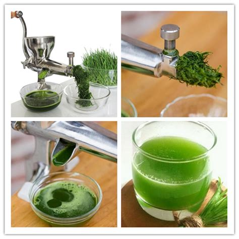 juicer manual fruit juice machine wheatgrass healthy vegetable extractor wheat grass zf juicers juicing