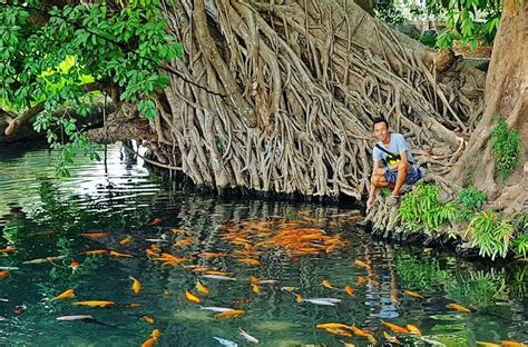Jual Kolam Terpal Mojokerto prospek budidaya ikan di mojokerto prassterpal
