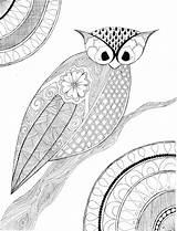 Owl Zentangle Coloring Pdf Printing sketch template