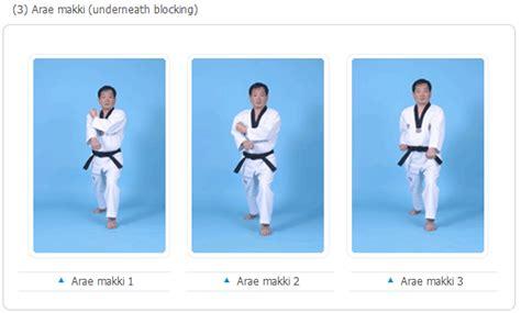 sabuk taekwondo karate beladiri gerakan dasar taekwondo basic movements demos martial