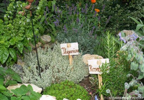 kräutergarten anlegen beispiele kr 228 utergarten anlegen anleitung und grundregeln garten hausxxl garten hausxxl