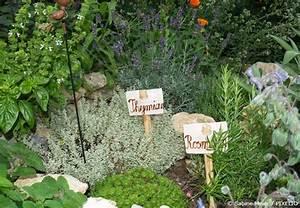 Kräuterbeet Anlegen Bilder : kr utergarten anlegen anleitung und grundregeln garten hausxxl garten hausxxl ~ Orissabook.com Haus und Dekorationen