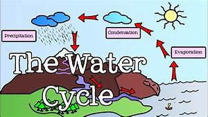 Diagrams Of Water Cycle For Kids