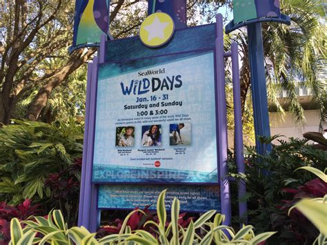 SeaWorld Orlando shows you some 'Wild Days' on weekends in ...