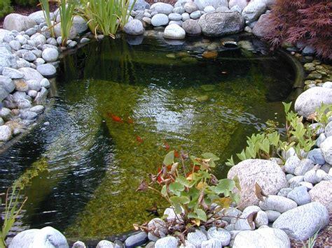 comment prot 233 ger mon bassin en automne almateon