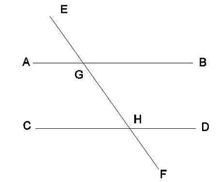 alternate interior angles types of angles types of everything