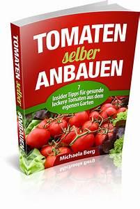 Tomaten Selber Anbauen : kontakt michis tomatensamen ~ Orissabook.com Haus und Dekorationen