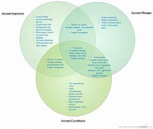 Team Riley Roles And Responsibilities   Venn Diagram
