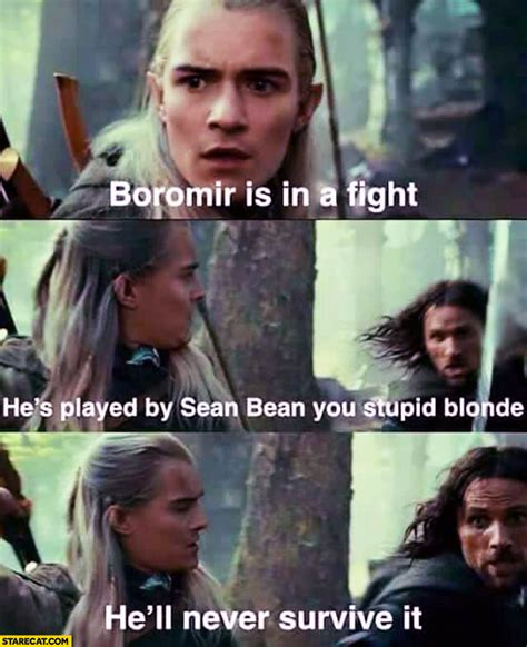 Boromir Meme - boromir is in a fight he s played by sean bean you stupid blonde he ll never survive it