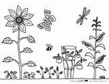 Coloring Vegetable Garden Sheet Pages Sheets Drawing Printable Joel Colouring Printables Print Malvorlagen Madebyjoel Craft Vegetables Gardening Flowers Flower Ausmalen sketch template