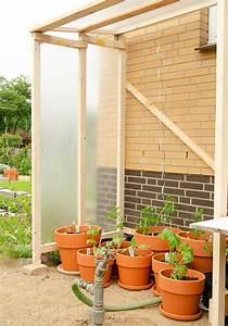 Tomatenhaus Bauen Kostenlos : tomatenhaus selber bauen don t panic ~ Watch28wear.com Haus und Dekorationen