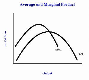 Finding labor that maximizes average product of labor