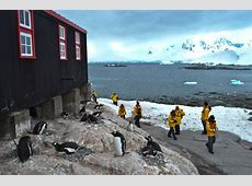 Expedition Antarctica Why it's Worth Every Penny Round