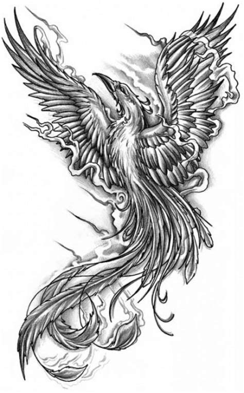 52+ Black Phoenix Tattoos Collection