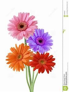 Blumen Bewässern Mit Wollfaden : wilde blume stockbild bild von sch nheit gru gl cklich ~ Lizthompson.info Haus und Dekorationen