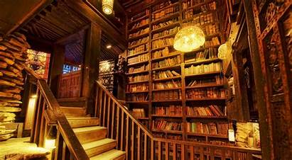 Library Personal Cozy Indoor Libraries Looks
