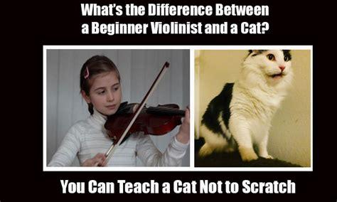 violin jokes guaranteed    laugh  loud