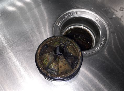 how to clean sink disposal how to clean garbage disposal ultimate step by step guide