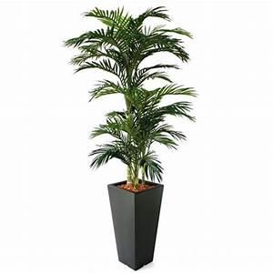 Fausse Plante Verte : fausse plante verte interieur fleuriste bulldo ~ Teatrodelosmanantiales.com Idées de Décoration
