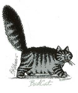 kliban cat 25 best ideas about kliban cat on cat