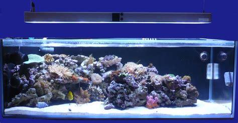 aquarium eau de mer 600 litres