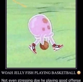 woah jelly fish playing basketball   stressino