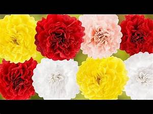 Ideen Mit Herz Lagerverkauf : ideen mit herz nelken aus krepp papier basteln diy bl ten bunte papierblumen youtube ~ Eleganceandgraceweddings.com Haus und Dekorationen