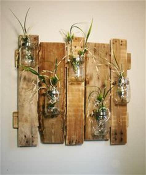 Frische Wanddekoration Mit Pflanzengreen Wall Plant Decor by 5 Geniale Diy Hacks Kreative Wand Deko Einfach Selber