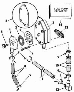 Evinrude Fuel Pump Parts For 1989 25hp E25telcem Outboard