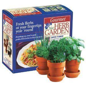 chia herb garden gourmet chia herb garden planter set grow
