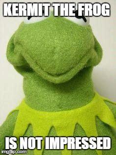 Kermit The Frog Meme Generator - kermit face imgflip