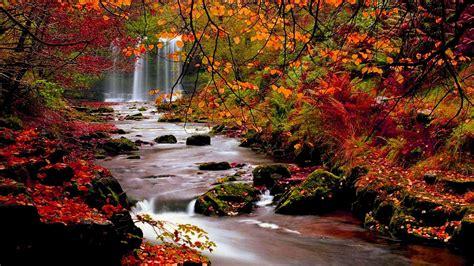 Desktop Autumn Wallpaper by Fall Landscape Wallpaper Hd Autumn Trees Nature
