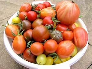 Tomaten Selber Anbauen : tomaten archive neues vom landei ~ Orissabook.com Haus und Dekorationen