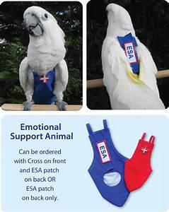 Animal Month Chart Esa Emotional Support Animal Flightsuit Avian Fashions