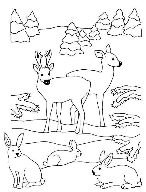 Ausmalbilder kalender & zeit kostenlose ausmalbilder zum thema kalender & zeit für die grundschule. 10 Malvorlagen Tiere Im Wald | Top Kostenlos Färbung Seite ...