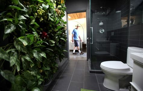 creative ways   plants   bathroom