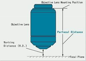 Parfocal Distance | Olympus IMS