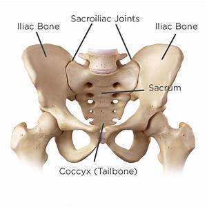 Why Women Are Prone To Si Joint Pain  U0026 7 Proven Ways To Deal
