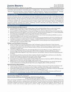 Sample resume international business development manager for Software executive resume