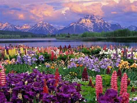 Beautiful Spring Wallpaper : Wallpapers13.com
