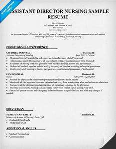 Assistant Director Nursing Resume Template