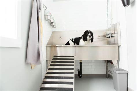 dog washing sink stainless stainless steel dog grooming sinks caddetails