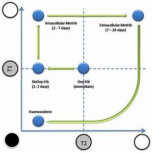 Evolution Of Mri Signal Characteristics Of Intracranial