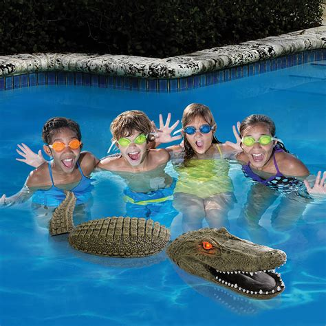 Pool Guarding Gator Decoy  The Green Head