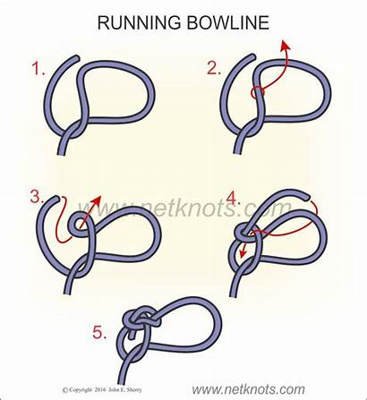 Bowline Running Knot Tying Rope Instructions Animated
