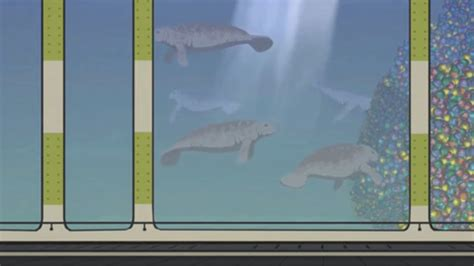 The episode was posted to that guy with the glasses on december 21st, 2012, and to youtube on june 30th, 2013. South Park Family Guy Manatees