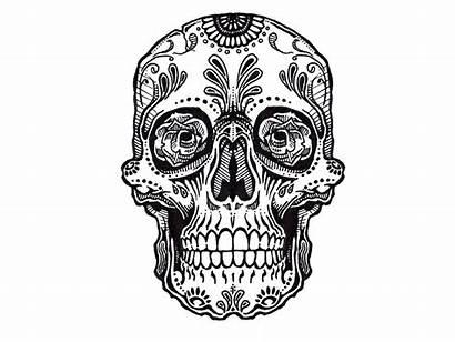 Skull Tattoo Sugar Tattoos Rose Mexican Skulls